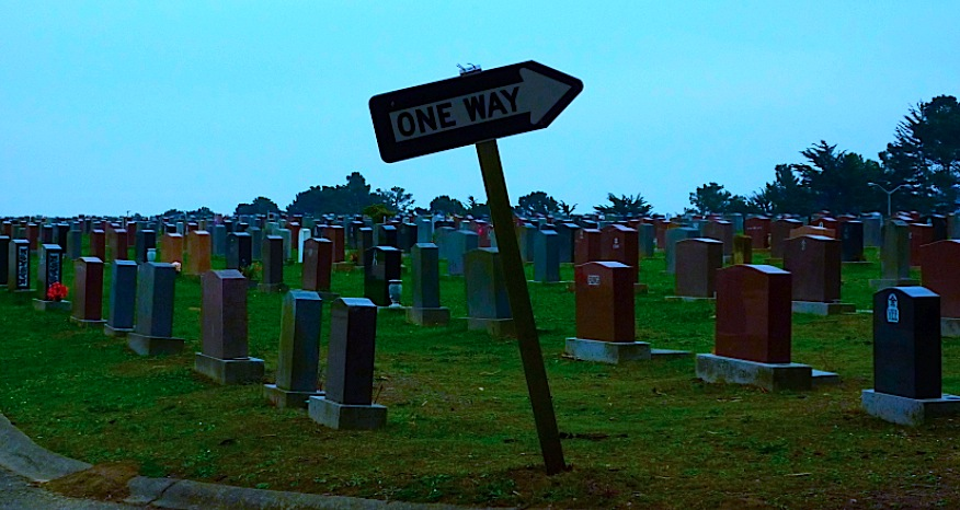 one-way sign in graveyard