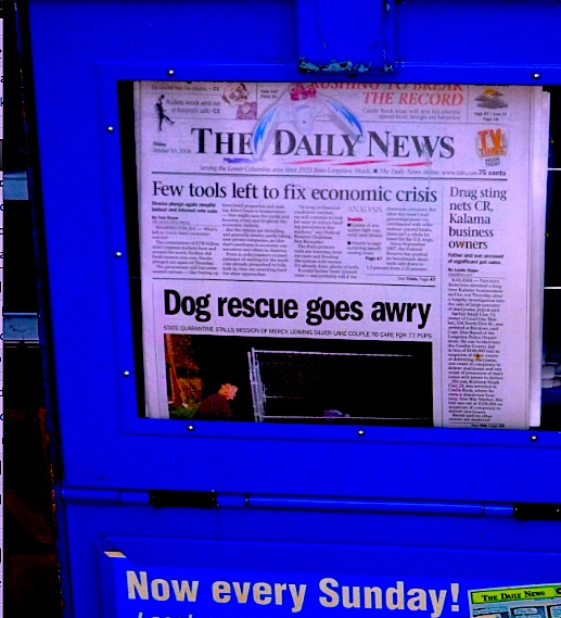 dog rescue story 2